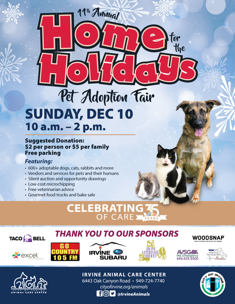 Home for the Holidays - 4LIFE ANIMAL RESCUE
